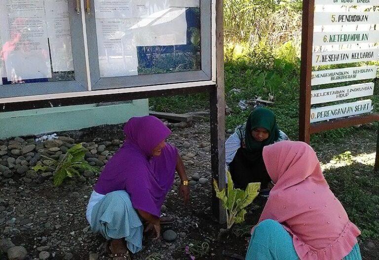 4 Perempuan Peduli Leuser Penelitian Harimau Sumatra Aceh