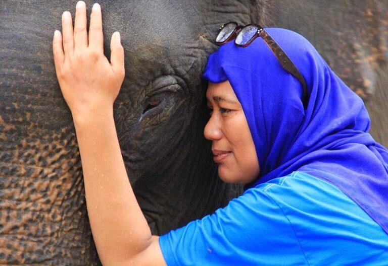 7 Perempuan Peduli Leuser Sayang Gajah